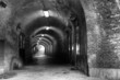 Old brick tunnel (with light on the end) B/W