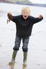 Young boy holding seaweed at beach