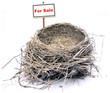 bird nest - real estate '08 2