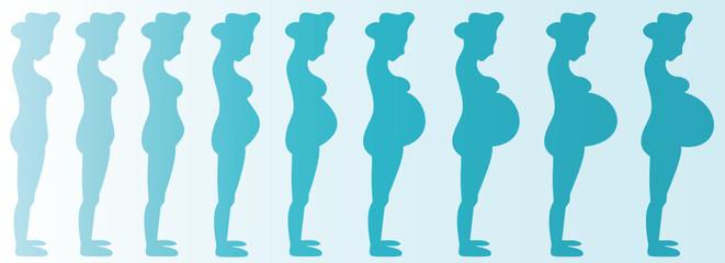 Pregnant Woman (Boy) Months 1-9