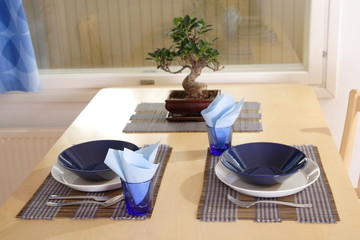 Table set near window