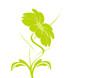vecteur série - bouquet de fleurs vert et courbe en été