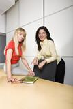 Two businesswomen at work poster
