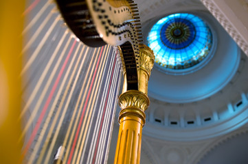 Harp strings close up