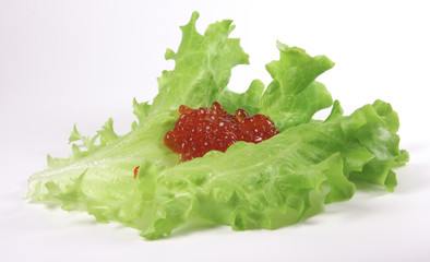 Red caviar on the lettuse leaf
