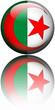 Drapeau Algérie 3D Reflet