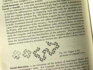 Fractal - Dictionary Definition