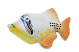 Fish magnet macro poster