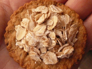 cracker with oats on a hand