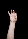 sign language number nine poster