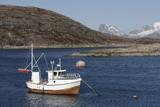 Norwegian fishing boat  poster