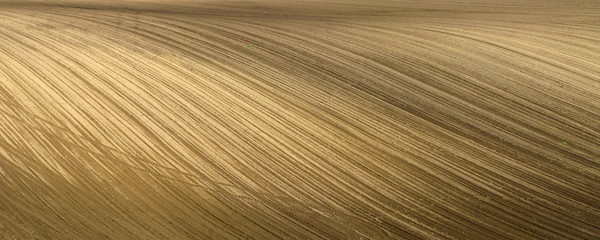 Field with furrows