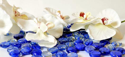 Wellness Steine Orchideen