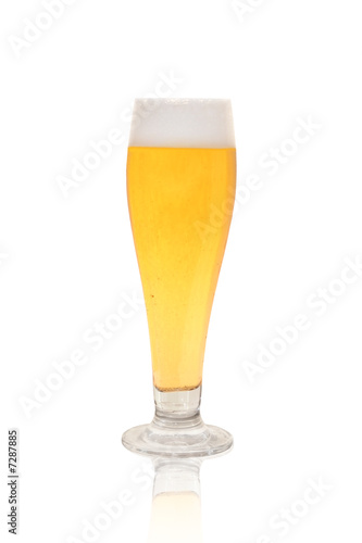 glass of beer on white background