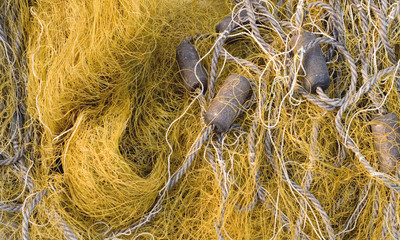 fishing net