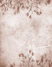 Magnolia vintage papier