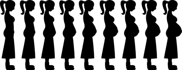 Pregnant Women Stages 1-9