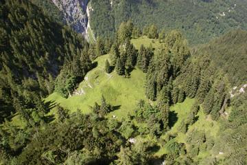 Höhenangst? Bergwald um Alpspitze und Zugspitze