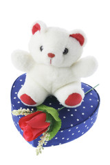 Teddy Bear on Gift Box