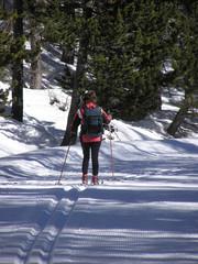 1559 - Ski de fond sur la route du col d'Izoard