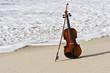 Close up of a Violin and the Atlantic Seashore