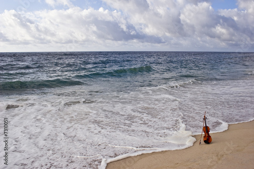 Violin and  the  Atlantic Ocean Seashore