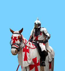 White Medieval Knight