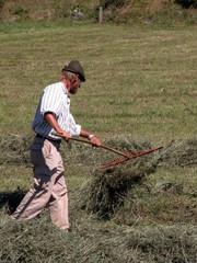contadino con il rastrello