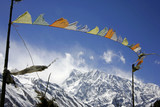 praying flags floating in the wind in  the annapurna, nepal poster