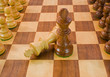 Chess Adversaries