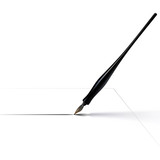 Calligraphy Pen Drawing Line with Ink poster