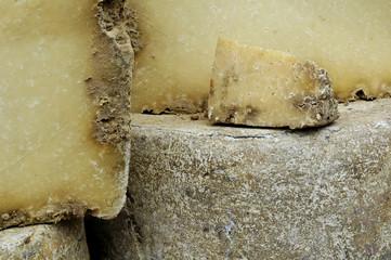 fromages de salers