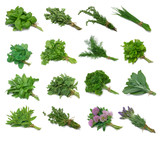 Fototapety Herb Series Sampler with clipping paths