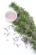 Rosemary essential oil for aromatherapy