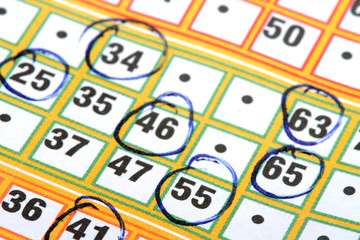Bingo card with circled numbers