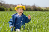 happy little boy run on the spring field poster