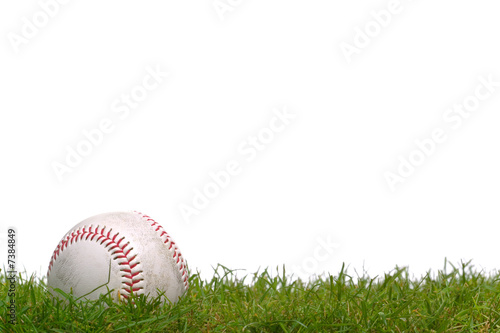 Baseball in the grass - 7384849