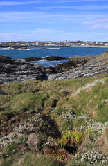 Trearddur Bay