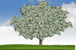 Marketing Money Tree