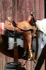 Saddled horse near a barn