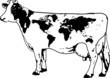 vaca mundo