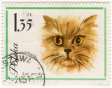 Persian (Longhair) cat on vintage post stamp poster