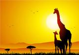 Giraffe and pup at sunset poster