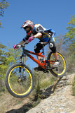 Mountain Bike - 7428415