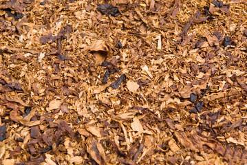 cuts of dried tobacco