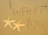 I Want You Written in Sand poster