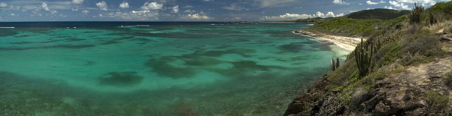 Panorama d'une plage des antilles