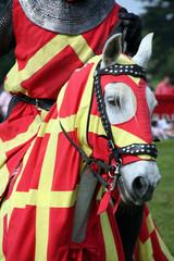 Knights horse