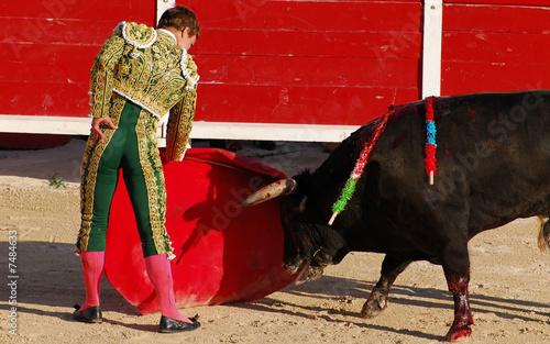 Staande foto Stierenvechten torero 2