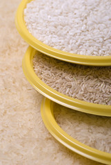 Various shapes of rice.